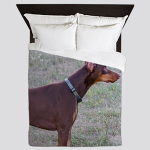 Red Doberman Queen Duvet